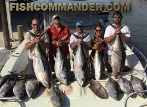 Yellowfin Tuna Fishing LA