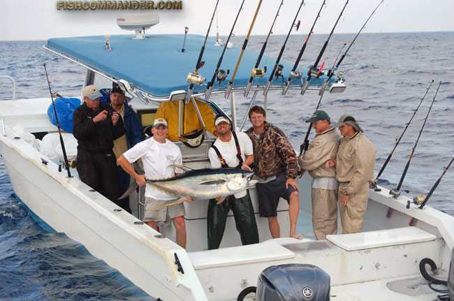 Fishing reports grand isle venice la yellow fin tuna for Tuna fishing boats